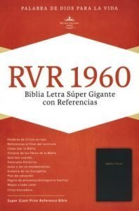 large print spanish bible