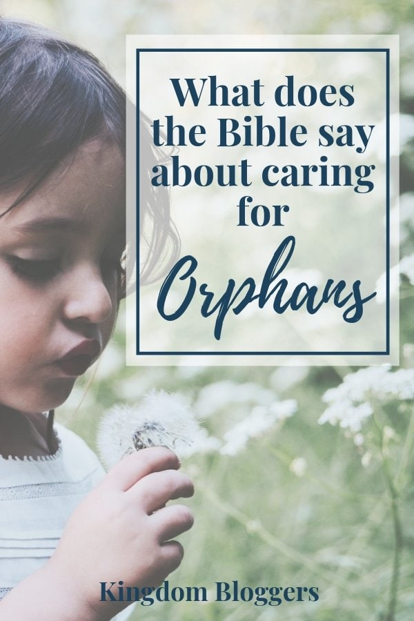 What does the Bible Say About Orphans