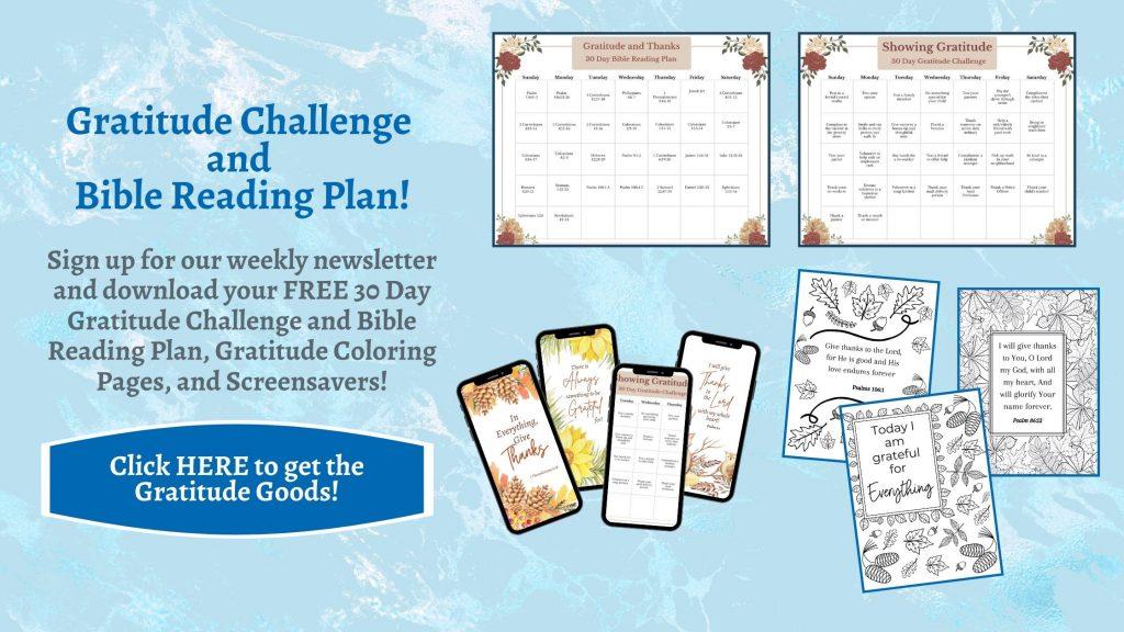 Gratitude Challenge and Screensavers