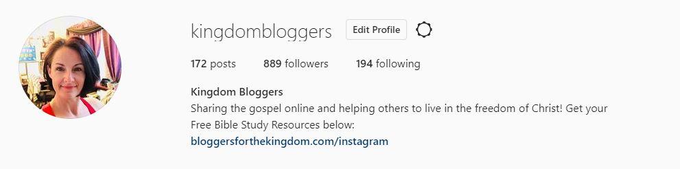 snapshot of instagram bio