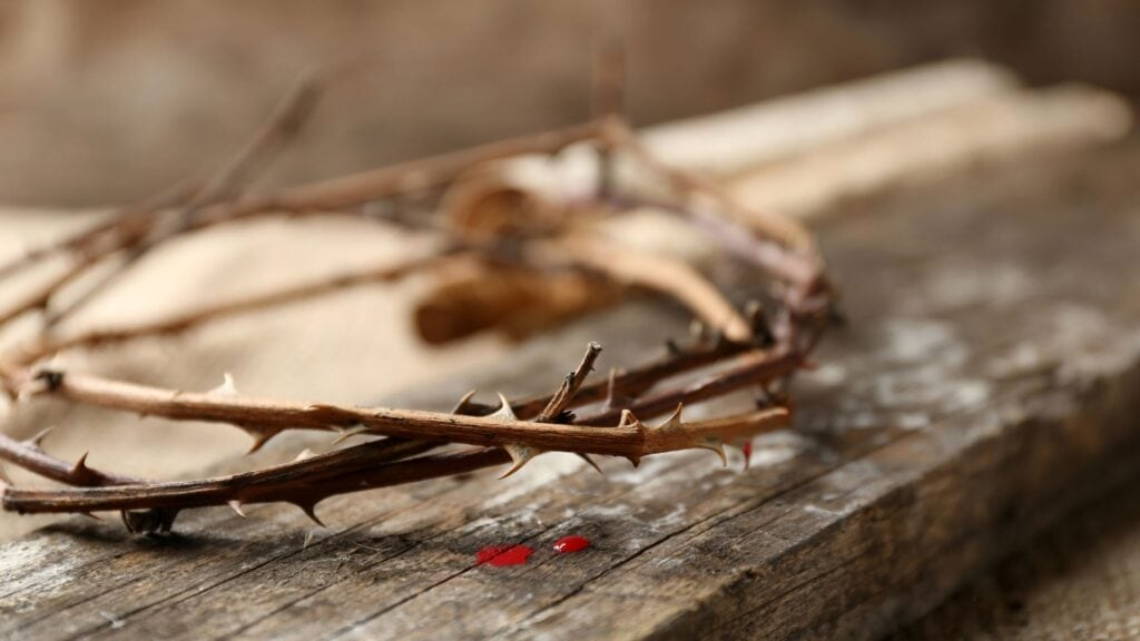 the blood of Jesus on a crown of thorns
