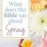 bible verses for spring