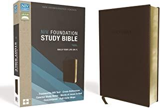 niv foundation study bible