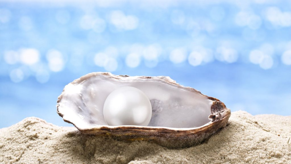 oyster shell with a pearl in it laying on the beach