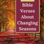 Autumn landscape with an overlay that says bible verses about changing seasons