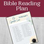 Februay Bible Reading Plan mockup