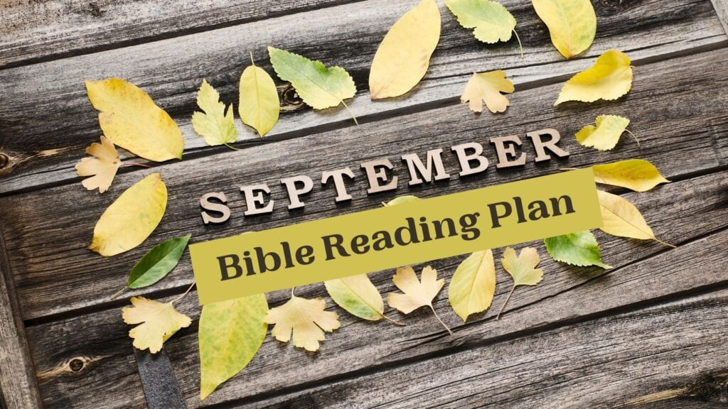 September Bible Reading Plan writte on a wooden pallet with yellow leaves scattered around it