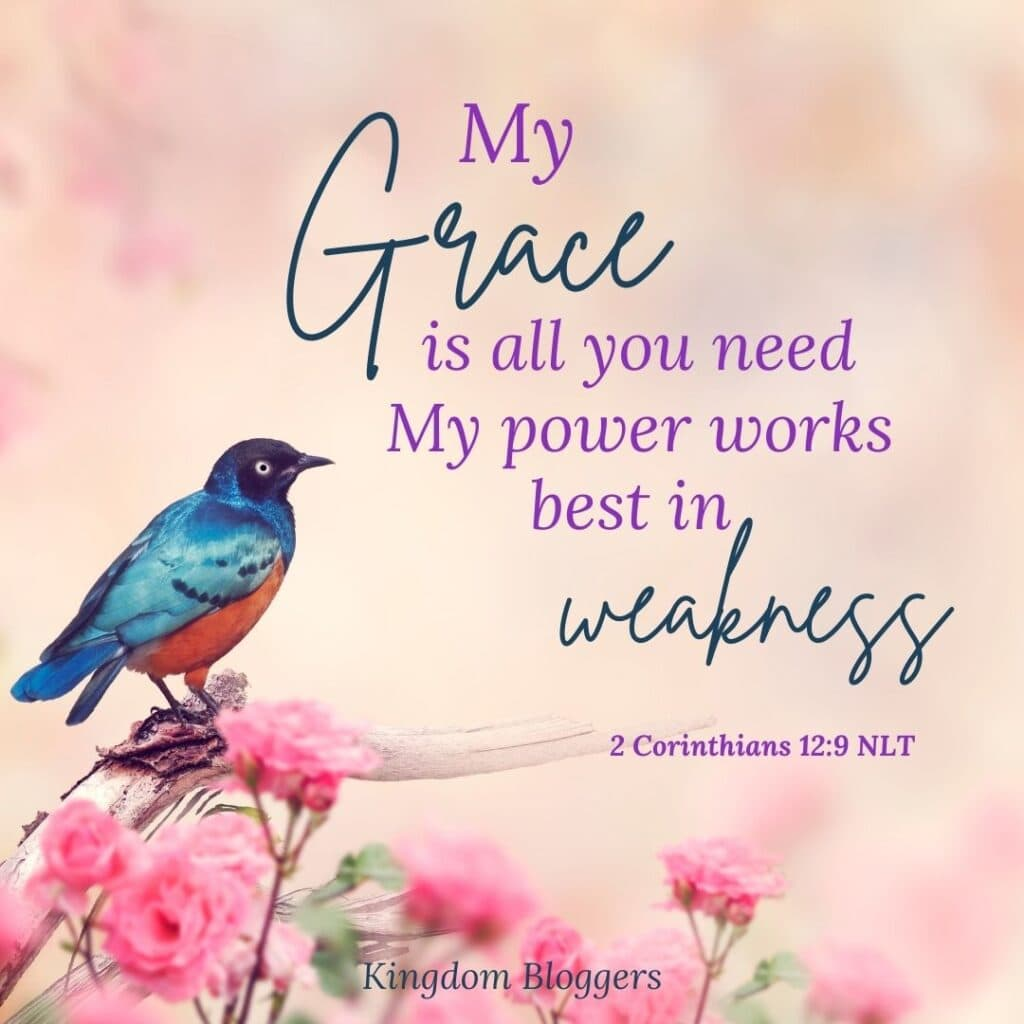 my grace is all you need bible verse on a pretty backgound with a bird and flowers