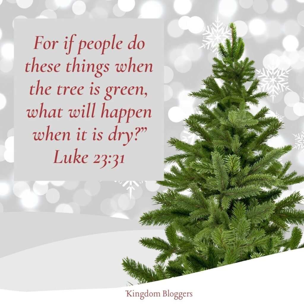 Bible Verse About Christmas Trees