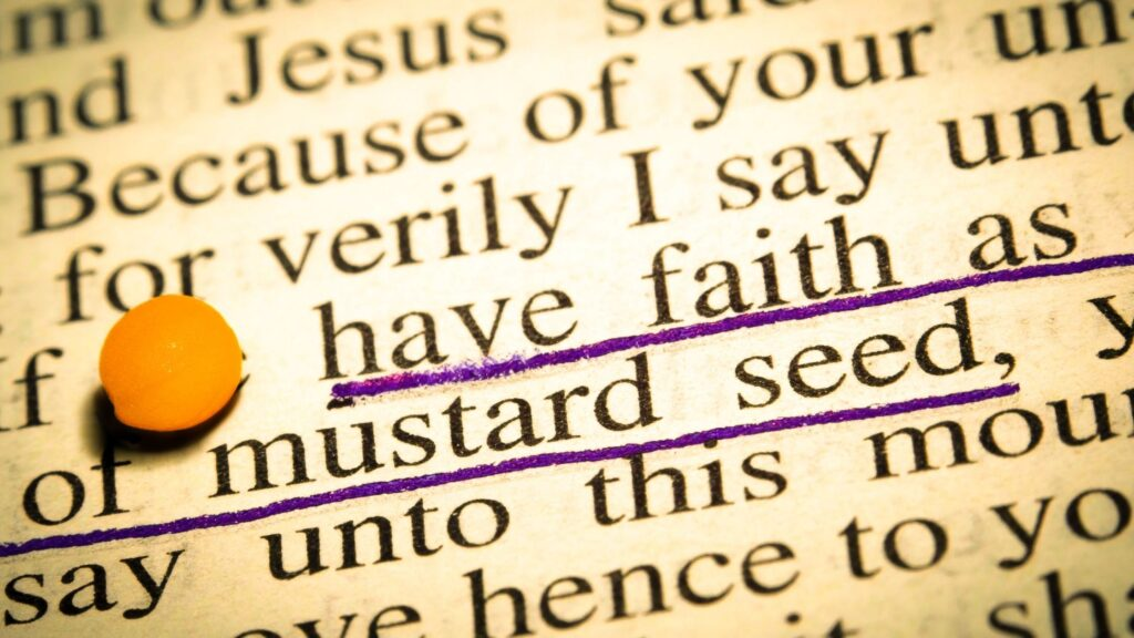 page in the bible that talks about mustard seed faith